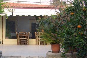 Crète : la ville à l'ombre des oliviers
