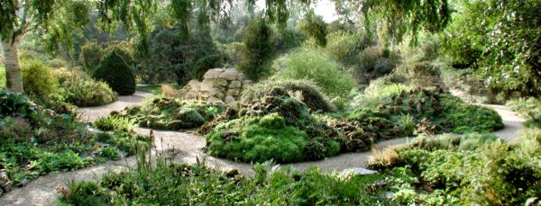jardin_alpin