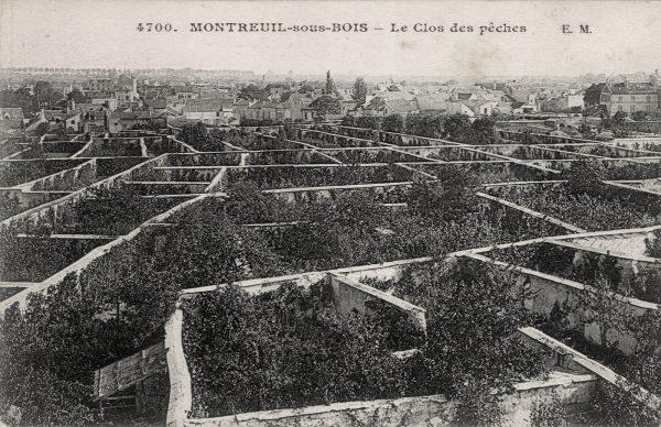 image_historique_map